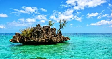 Crystal Rock a Mauritius