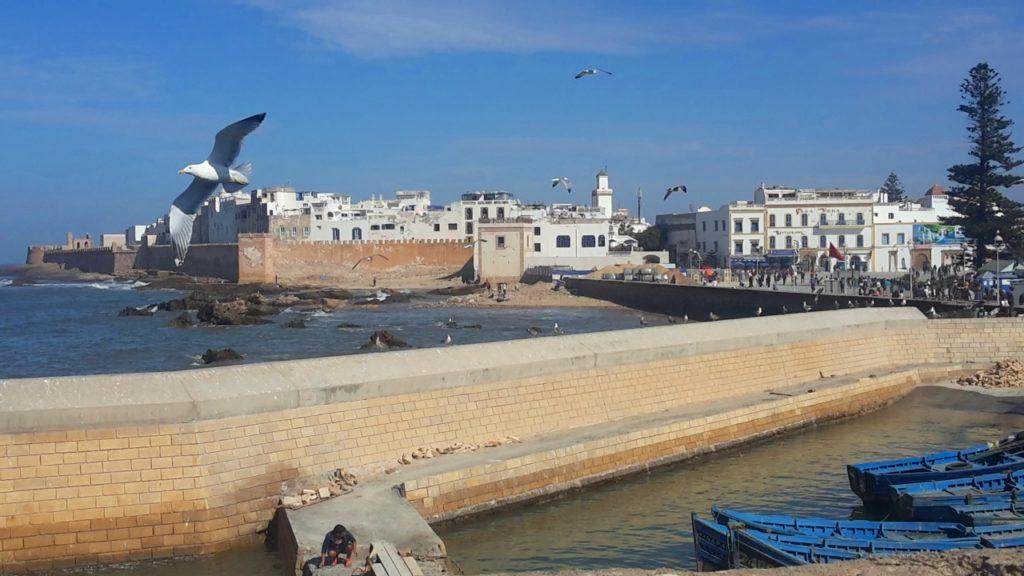 Essaouira - la città bianca